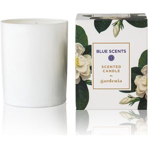 Gardenia scented candle < Accessories & candles