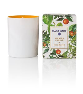 Mandarin scented candle < RUNNING OFFERS