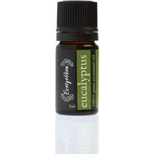 Eucalyptus essential oil 5ml < Essential oil