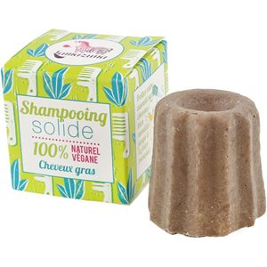 SOLID SHAMPOO for oily hair 55gr < Shampoo