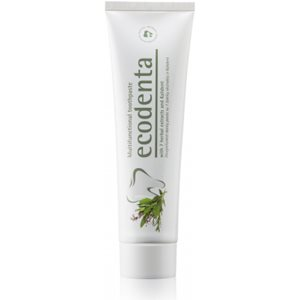 Multifunctional Toothpaste 100ml < Oral care