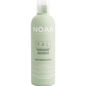 Rehydrating & Restorative Treatment Shampoo 250ml < Shampoo