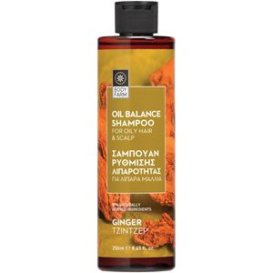 Shampoo for oily hair 250ml < Shampoo