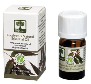 Essential oil eucalyptus 5ml < Essential oil