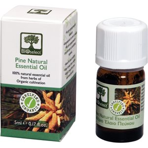 Essential oil pine 5ml < Cold & pain treatment