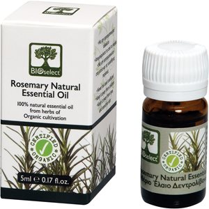 Essential oil rosemary 5ml < Essential oil